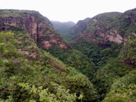 Pachmarhi_valley_Madhya_Pradesh_INDIA